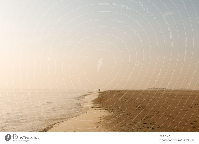 Entschleunigung Lifestyle Gesundheit Wohlgefühl Erholung ruhig Ferien & Urlaub & Reisen Sommerurlaub Strand Meer Mensch 1 Landschaft Wolkenloser Himmel