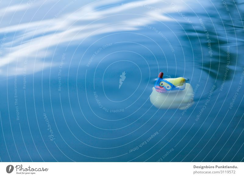 Freischwimmer Badeente Abenteuer Ferien & Urlaub & Reisen See Schwimmen Sommer Freiheit Ente Schwimmen & Baden Schnorcheln Kind Baggersee Natur Teich Tauchente