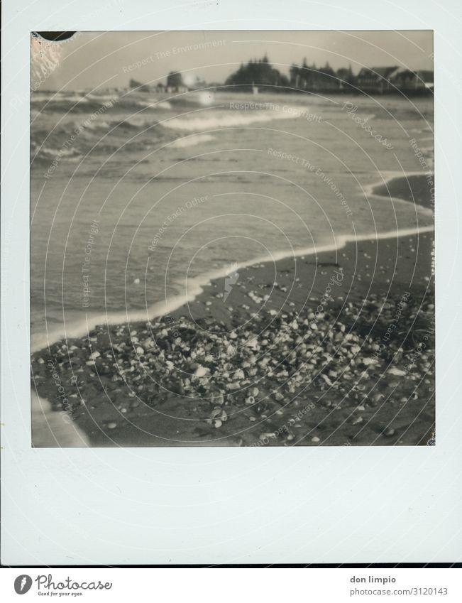 Kalifornien/Ostsee Ferien & Urlaub & Reisen Ferne Strand Meer Küste Dorf Muschel maritim Stimmung Idylle Polaroid Schwarzweißfoto Außenaufnahme Nahaufnahme