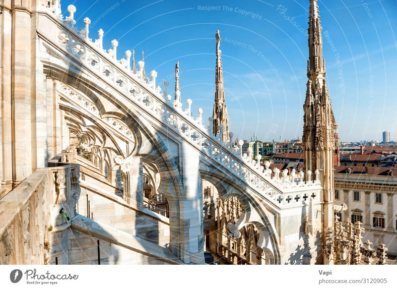 Weiße Statue auf der Spitze der Domkirche Ferien & Urlaub & Reisen Tourismus Ausflug Sightseeing Städtereise Sommer Sommerurlaub Dekoration & Verzierung Museum