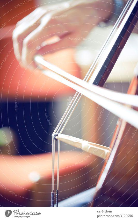 Cello ruhig Spielen Musik elegant Konzert Musikinstrument Klassik Orchester musizieren Cellobogen Klassisches Konzert