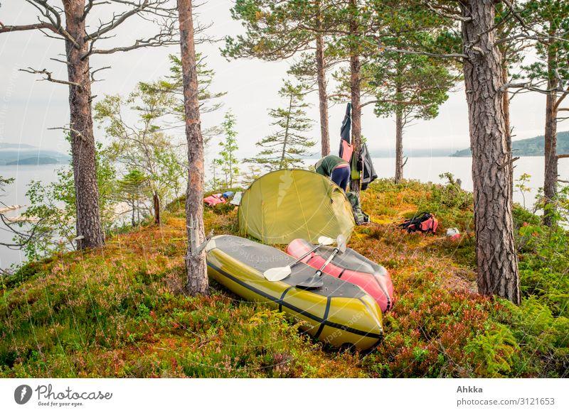 Inseleroberung Zufriedenheit Erholung ruhig Ferien & Urlaub & Reisen Abenteuer Natur Herbst Baum Kiefer Seeufer Skandinavien Zeltlager Kanu Lebensfreude