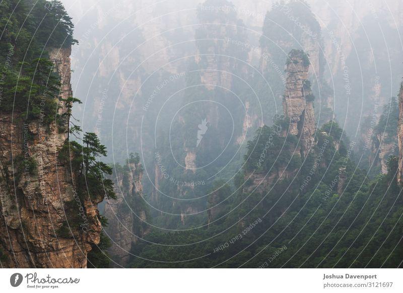 Zhangjiajie Nationalpark Ferien & Urlaub & Reisen Tourismus Sightseeing Natur Berge u. Gebirge schön Asien Asien Reisen China berühmter Ort hunan provinz