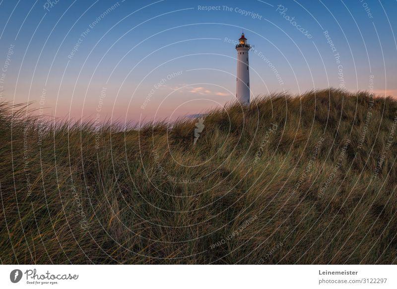 Lyngvig Fyr Ferien & Urlaub & Reisen Tourismus Ausflug Sommer Sommerurlaub Strand Meer Natur Landschaft Wolkenloser Himmel Schönes Wetter Gras Hügel Küste