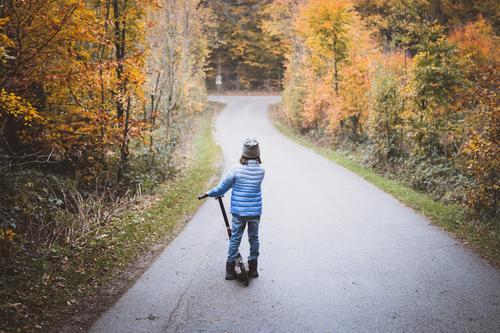 Ausflug mit Roller Kind 1 Mensch 3-8 Jahre Kindheit Natur Herbst Baum Wald Straße Wege & Pfade Blick stehen blau braun gelb grau Abenteuer Glück Freude Farbfoto