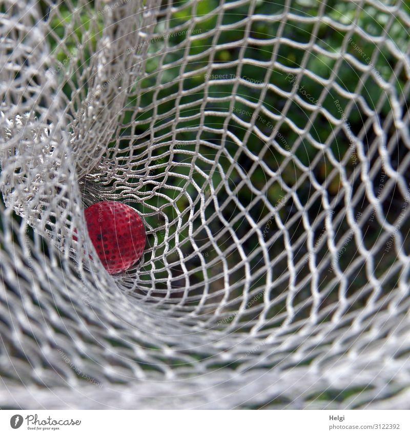 ein roter Minigolfball liegt in einem weißen Netz Freizeit & Hobby Spielen Schönes Wetter Ball Kunststoff liegen authentisch einzigartig klein grün Freude