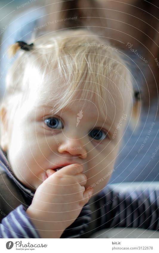 Ich hab die Haare schön Spielen Mensch feminin Kind Kleinkind Mädchen Kindheit Hand Finger Haare & Frisuren bauen beobachten entdecken Essen füttern genießen