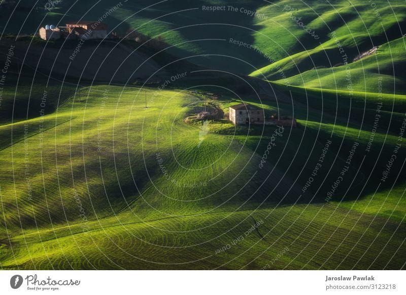 Wunderschöne Hügel in der grünen Farbe des Frühlings. Landschaft Natur ländlich Wiese Feld Sommer Ackerbau reisen Gras im Freien Bauernhof Baum Berge u. Gebirge