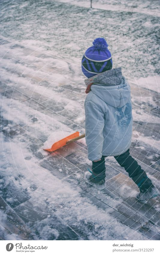 Schneeschiebender Junge Kind Mensch blau grün weiß Haus Winter Bewegung Garten Schneefall gehen maskulin Eis Kindheit laufen