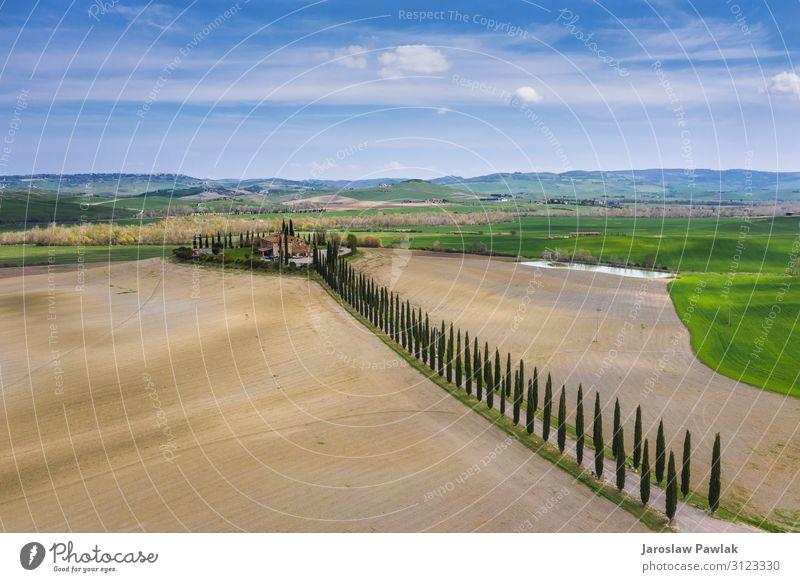 Erstaunliche Felder der Toskana. Dröhnen oben Antenne Landschaft Italien Natur Europa Bauernhof ländlich Wiese Baum Zypresse im Freien Ackerbau panoramisch grün