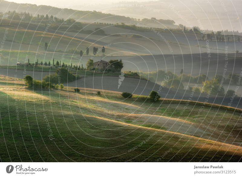 Die Toskana ist der schönste Ort in Europa und wird von Touristen am meisten besucht. Die Landschaft hat die schönste Form der Gegend. Italien Wiese Natur