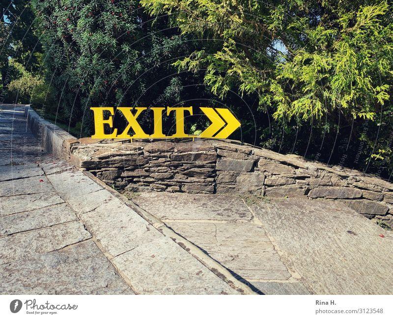 EXIT Natur grün Baum gelb Metall Schriftzeichen Schilder & Markierungen Hinweisschild Zeichen Wegweiser Warnschild