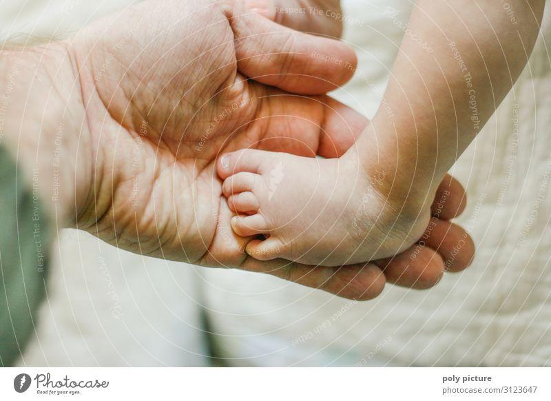 Baby Fuß in Männer Hand Jugendliche Mann Erholung Freude 18-30 Jahre Lifestyle Beine Erwachsene Leben Liebe Familie & Verwandtschaft Spielen Zufriedenheit