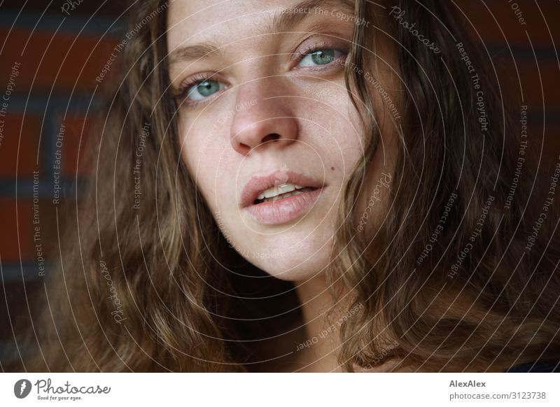 Portrait einer jungen Frau vor einer Ziegelsteinmauer Lifestyle Stil schön Leben Junge Frau Jugendliche 18-30 Jahre Erwachsene Mauer Wand brünett langhaarig