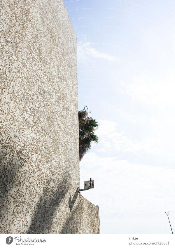 unter Palmen Himmel Schönes Wetter exotisch Palmenwedel Menschenleer Mauer Wand Fassade eckig Stadt Farbfoto Gedeckte Farben Außenaufnahme Textfreiraum rechts