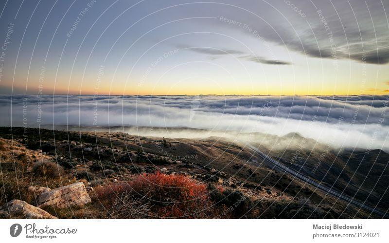 Malerische Berglandschaft über den Wolken bei Sonnenuntergang, USA. schön Ferien & Urlaub & Reisen Ausflug Abenteuer Ferne Freiheit Camping Sommerurlaub