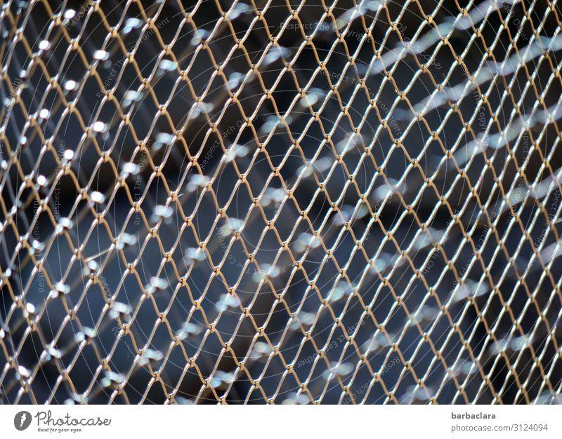 verloren | grenzenlose Freiheit dunkel Gefühle Linie Metall gefährlich Schutz Sicherheit Netzwerk stark Zaun eckig Kontrolle silber Verbote Enttäuschung