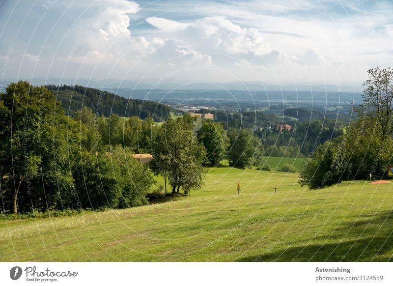 Weite Umwelt Natur Landschaft Pflanze Luft Himmel Wolken Horizont Sommer Wetter Schönes Wetter Baum Blume Gras Sträucher Wiese Feld Hügel Alpen Österreich Dorf