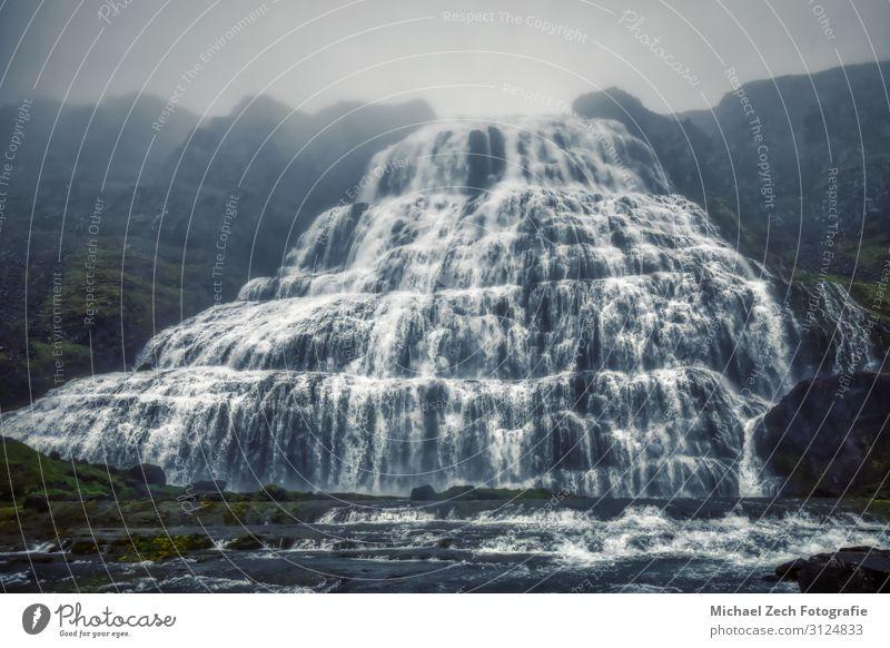 neblige Panoramaaufnahme des Dynjandi-Wasserfalls auf Island schön Ferien & Urlaub & Reisen Sommer Berge u. Gebirge Natur Landschaft Himmel Nebel Felsen Fjord