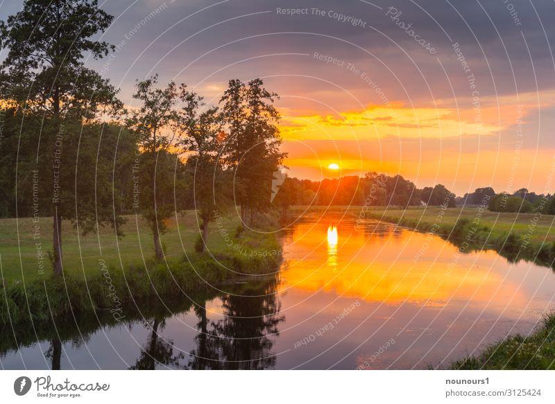 Sunset Natur Landschaft Pflanze Wasser Himmel Gewitterwolken Sonnenaufgang Sonnenuntergang Sommer Baum Gras Flussufer Spree grau grün orange Farbfoto