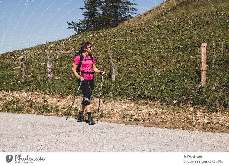 Wanderung Frau Mensch Sommer Pflanze Freude Berge u. Gebirge Erwachsene Leben Herbst Sport Gras Freiheit Ausflug gehen Zufriedenheit Freizeit & Hobby
