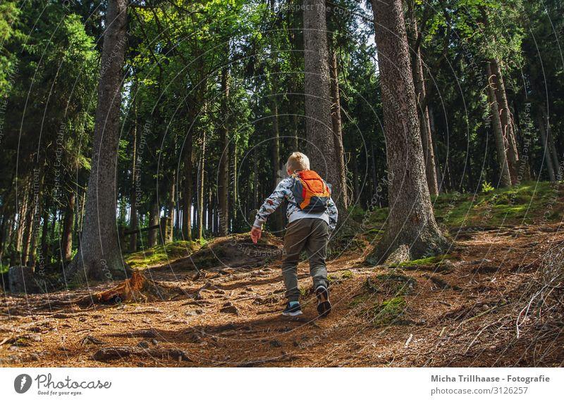 Spaß in der Natur Ferien & Urlaub & Reisen Abenteuer Expedition wandern Mensch maskulin Junge Familie & Verwandtschaft Kindheit 1 3-8 Jahre Landschaft Sonne