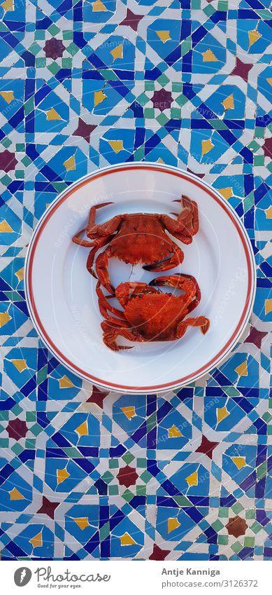 Krebse Slowfood bretonische Küche Krustentiere Lifestyle Sommerurlaub Meer Genussreise Restaurant Essen Erfolg Gastronomie sprechen Team Paar Marktplatz Hafen 2