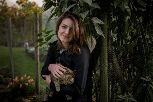 Katzenliebe feminin Junge Frau Jugendliche 1 Mensch 18-30 Jahre Erwachsene Natur Pflanze Tier Sommer Blume Gras Blatt Sonnenblume Haustier Zaunpfahl