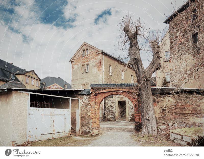Aua, mei Greize Himmel Wolken Baum Baumstamm Thüringen Deutschland Kleinstadt Altstadt Haus Burg oder Schloss Tor Bauwerk Gebäude Architektur Torbogen Garage