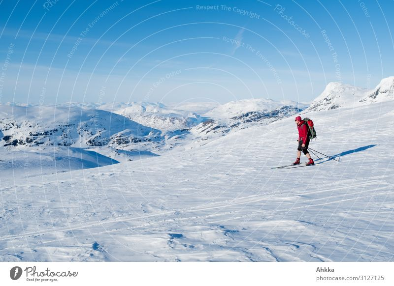 Skifahrer in nordischer Gletscherlandschaft Ferien & Urlaub & Reisen Jugendliche blau Farbe Junger Mann rot Winter Ferne Berge u. Gebirge Wege & Pfade Schnee