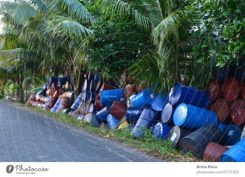 Tonnen an Tonnen Umwelt Natur Pflanze Dorf Stadtrand Fass Metall bedrohlich dreckig Ekel nachhaltig blau grün Verantwortung Entsorgung Farbfoto Außenaufnahme
