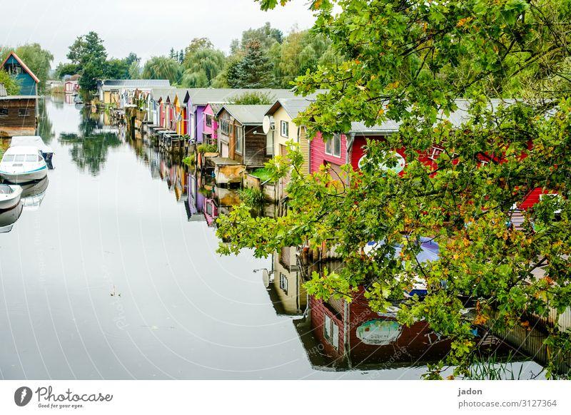 nah am wasser gebaut. Umwelt Natur Pflanze Wasser Herbst Schönes Wetter Baum Flussufer Haus Traumhaus Bauwerk Bootshaus Balkon Terrasse Verkehrswege