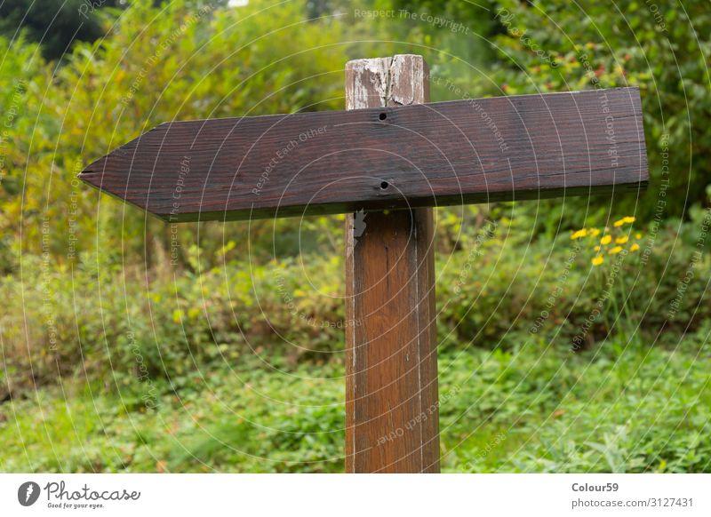 Holztafel Natur Schilder & Markierungen Hinweisschild Warnschild braun grün Mitteilung Symbole & Metaphern Information Holzschild blanko pfeil Holzpfeil