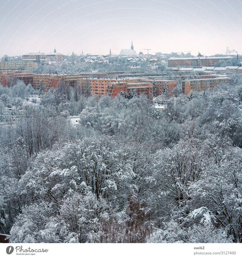 Kalte Stadt Umwelt Natur Landschaft Himmel Winter Schönes Wetter Eis Frost Schnee Baum Park Wald Bautzen Deutschland Kleinstadt Stadtzentrum Altstadt Skyline