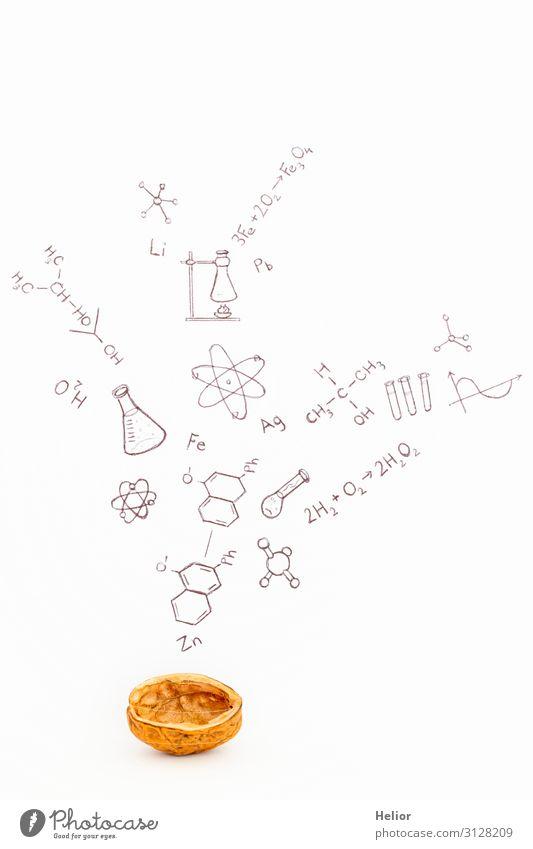 Concept of chemistry in a nutshell Studium Labor lernen braun schwarz weiß Atom Hintergrundbild Grafische Darstellung Ikon Grafik u. Illustration