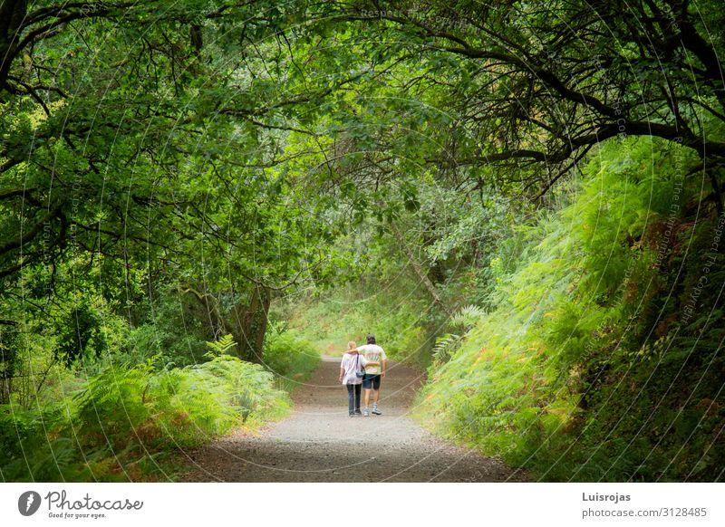 Frau Mensch Ferien & Urlaub & Reisen Natur Mann Pflanze grün Landschaft Baum Blatt Wald Berge u. Gebirge Gesundheit Lifestyle Erwachsene Leben
