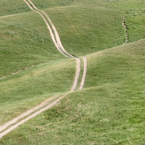 Kurvenlage Natur Landschaft Erholung Leben Umwelt Wege & Pfade Wiese Sand Linie Feld Kommunizieren Ordnung Lebensfreude Perspektive Schönes Wetter Hügel