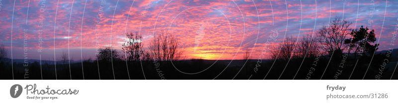 der himmel kocht Weitwinkel Panorama (Aussicht) Sonnenuntergang Baum Wolken groß Panorama (Bildformat)