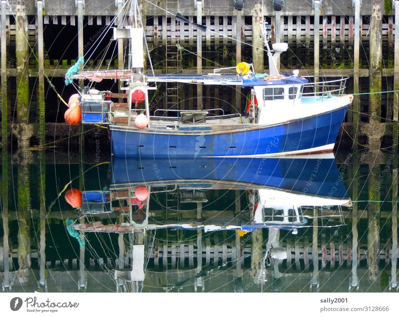 im sicheren Hafen... Schiff Boot fischen Fischerboot Spiegelung Flaute windstill ruhig Ebbe blau klein Wasser Schifffahrt Reflexion & Spiegelung Wasserfahrzeug