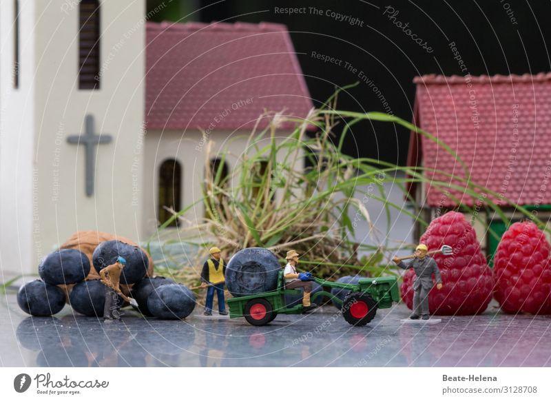 Vier Erntehelfer transportieren gigantische Beerenernte in der Dorfmitte auf die Ladefläche des Traktors spielzeugwelt Dorfzentrum Jumbo-size Riesenfrüchte