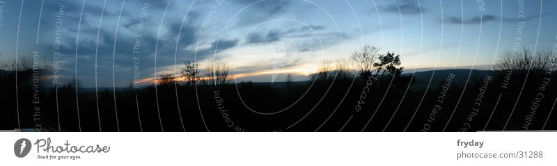 eye in the sky Baum Wolken groß Panorama (Bildformat)
