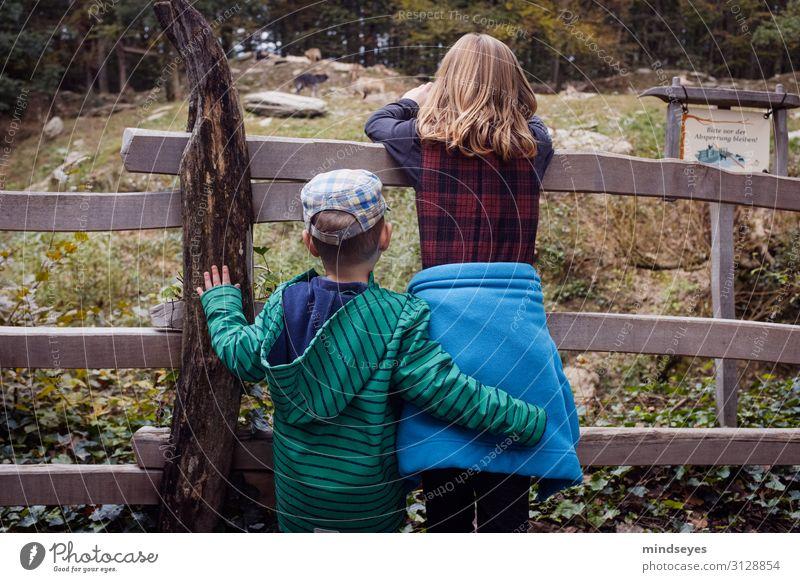 Bruder und Schwester von Hinten am Zaun Freizeit & Hobby Spielen Zoo Kind Geschwister Familie & Verwandtschaft Kindheit 2 Mensch 3-8 Jahre Natur Jacke Mütze