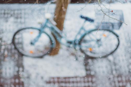 Fahrrad auf einem Baum stehend im Winter Vogelperspektive Erfurt Deutschland Hintergrundbild Fahrradfahren Weihnachten & Advent ökologisch Umwelt Flocke