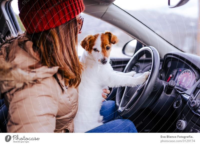 junge Frau in einem Auto mit ihrem süßen kleinen Jack Russell Hund Lifestyle Freizeit & Hobby Ferien & Urlaub & Reisen Ausflug Winter Mensch feminin Junge Frau