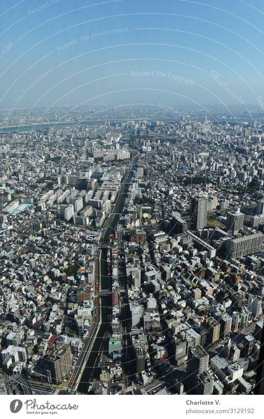 Weite Tokyo Japan Asien Hauptstadt Stadtzentrum Stein Beton Wasser entdecken Horizont komplex Leichtigkeit modern Unendlichkeit Ferne überblicken Aussicht