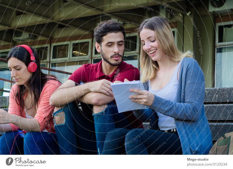 Gruppe von Universitätsstudenten, die gemeinsam im Freien studieren. Lifestyle Glück schön Sommer Schule lernen Studium sprechen Notebook Mensch Frau Erwachsene