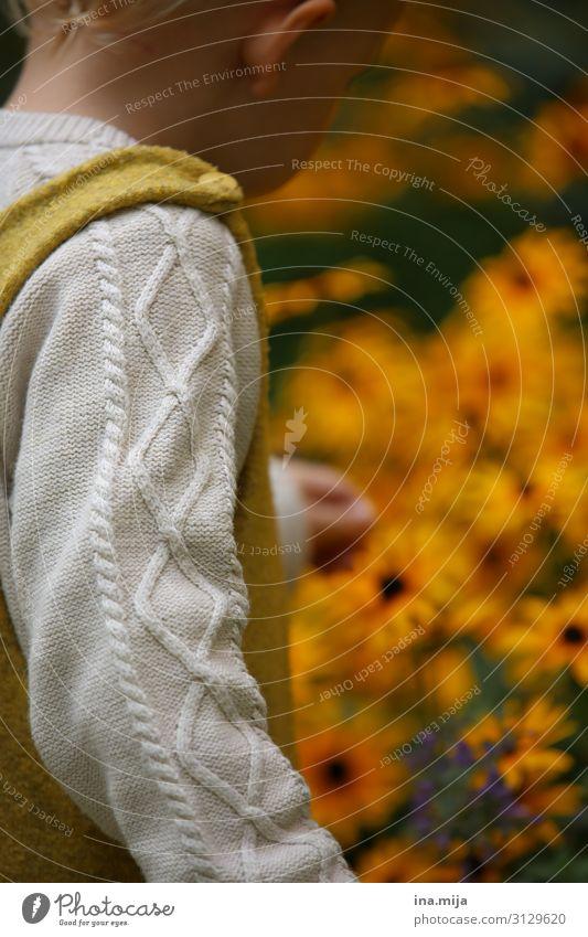 Herbstliche Erkundungstour Kind Mensch Ferien & Urlaub & Reisen Natur Blume Leben gelb Umwelt Junge Garten Freiheit orange Freizeit & Hobby Park Kindheit