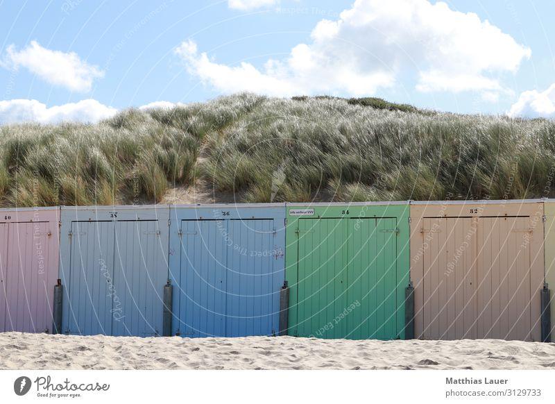 bunte Strandhütten am Strand von Oostkapelle, Niederlande Stil Glück Erholung Ferien & Urlaub & Reisen Tourismus Ausflug Freiheit Sommer Sommerurlaub Sonne Meer