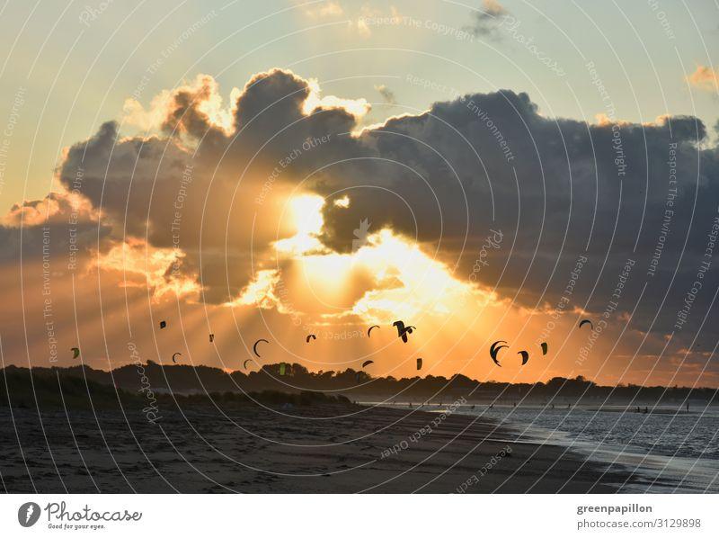 Kitesurfen im Sonnenuntergang an der Nordsee Surfen Kiting Ferien & Urlaub & Reisen Tourismus Abenteuer Freiheit Sommerurlaub Wellen Natur Landschaft Wasser