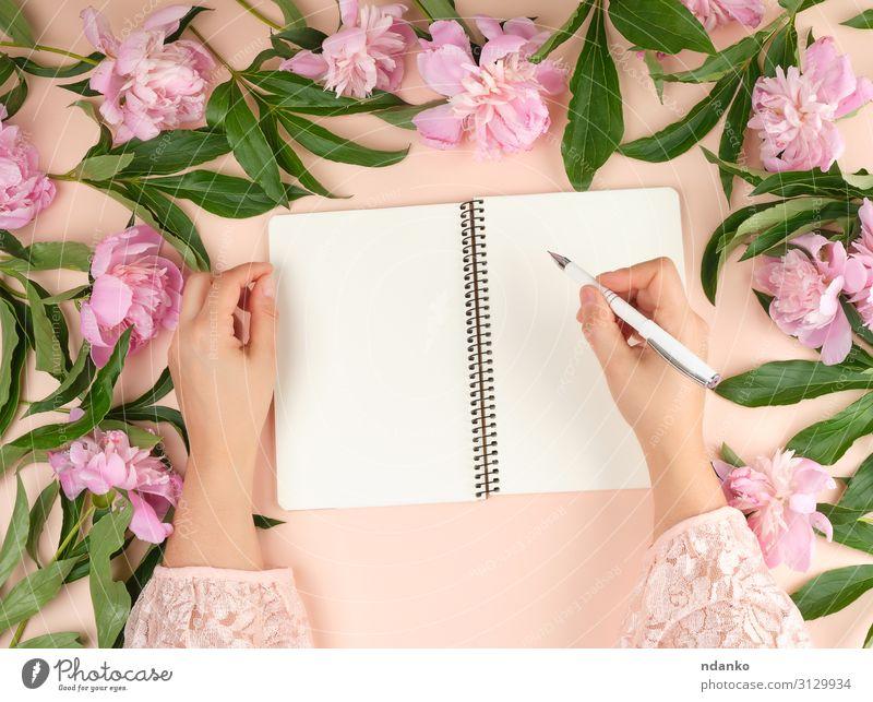 offenes leeres Notizbuch und zwei weibliche Hände Design Dekoration & Verzierung Tisch Geburtstag Arbeitsplatz Büro Business Frau Erwachsene Hand Buch Natur